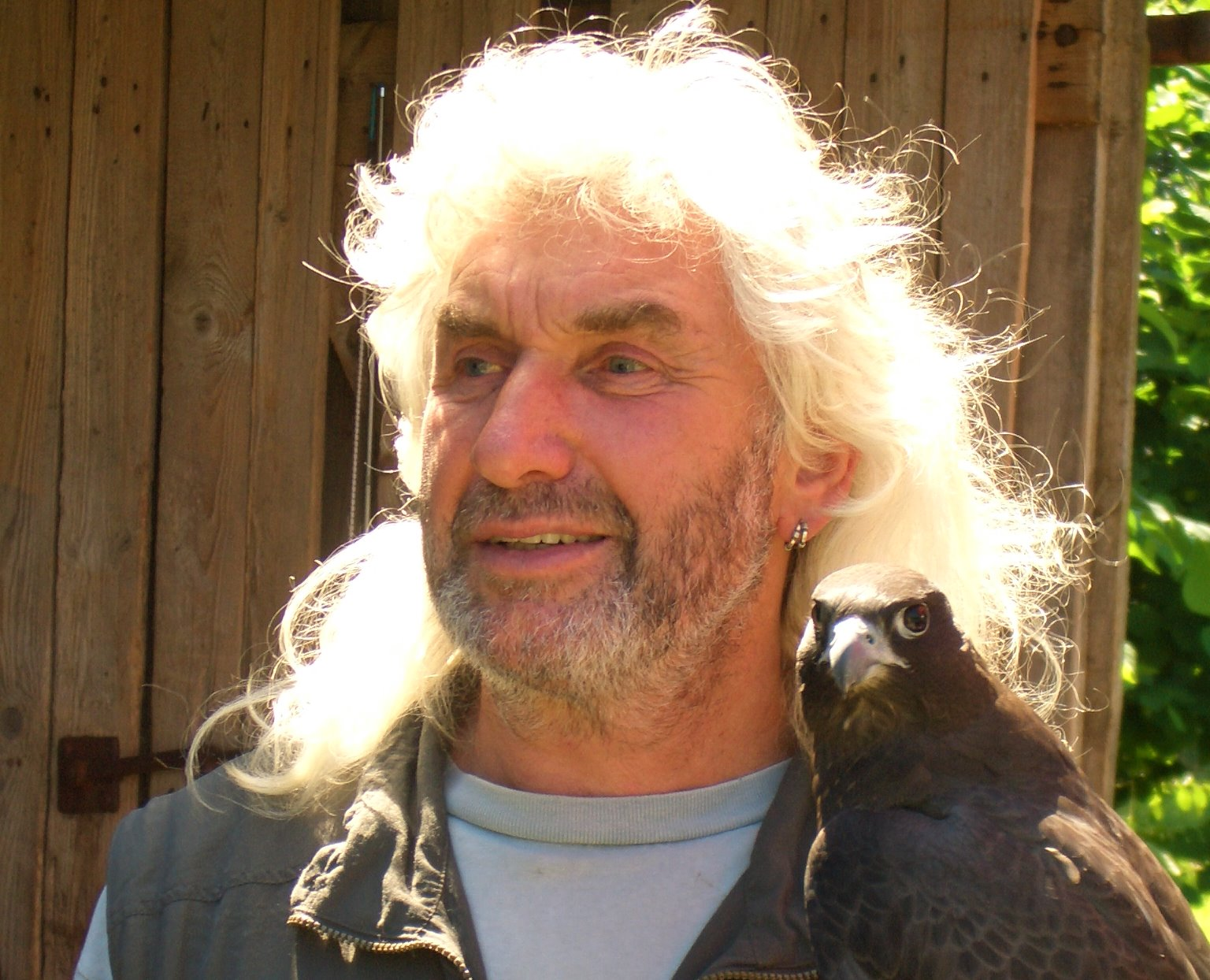 Leo mit schwarzem Falken im Camp 6
